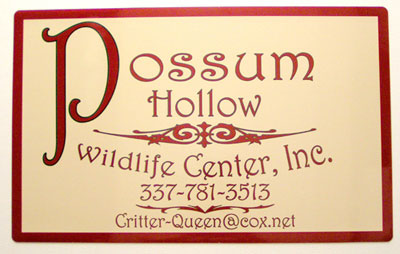 Possum Hollow Door Magnet